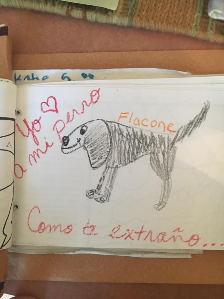 Children's drawings of deceased pets on display at the Brookfield Zoo.