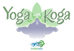 yoga-with-koga-logo-color