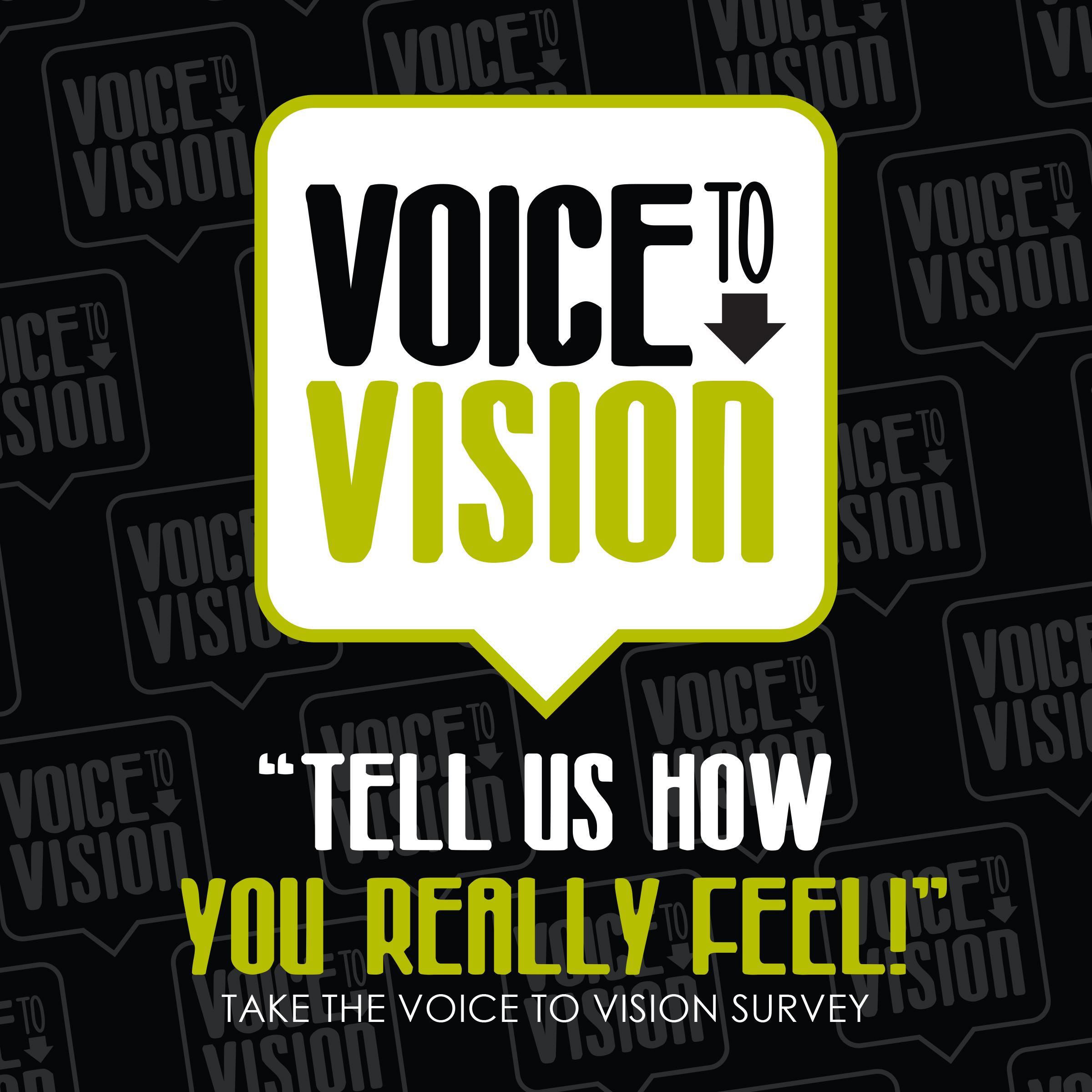 Voice to Vision SocialMedia2.jpg